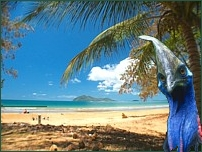Dunk Island just off Mission Beach - take a day trip - water taxi located about 400m up the beach.